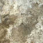 abalone-travertine.png